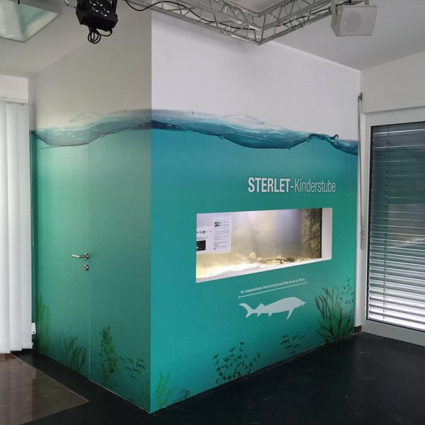 Wandgestaltung MA45